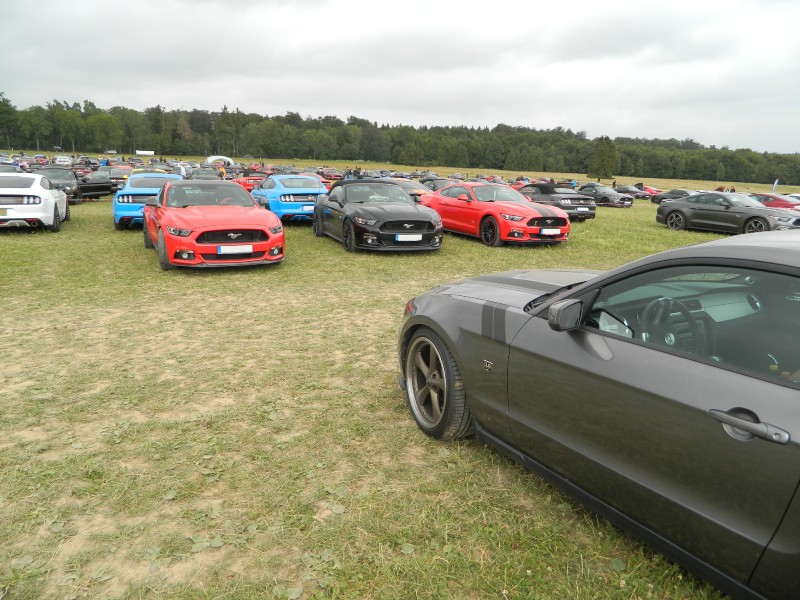 Mustang-Event-2018-03.jpg
