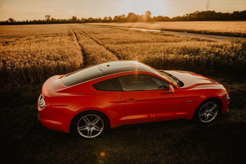 Mustang-46.jpg