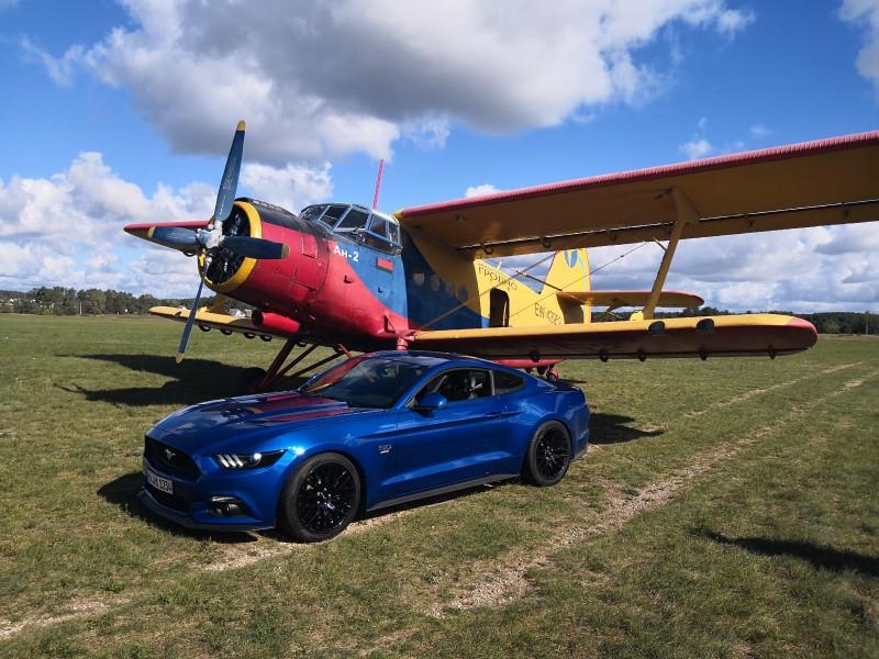 Individ-Mustang.jpg