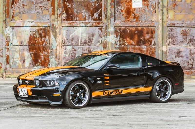 Mustang-Torsten-1-2.jpg